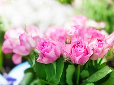 BERA-inset-flowers-funeralsoptions